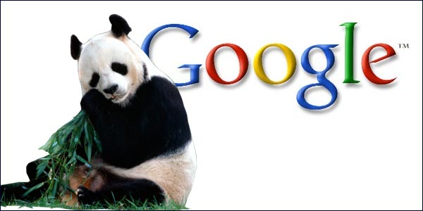 SEO Strategies You Need to Change After Google Panda Update