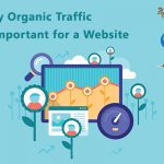 Why Organic Traffic is Important for a Website
